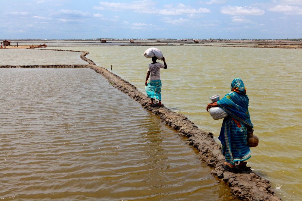 Disaster Displacement At COP25